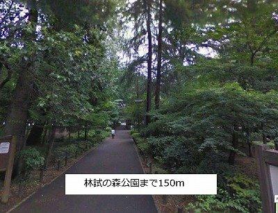 林試の森公園まで150m