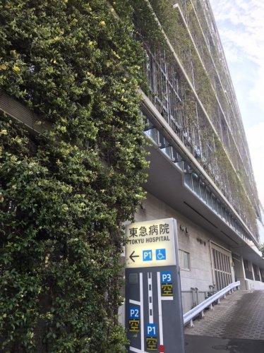 【総合病院】東急病院まで554m