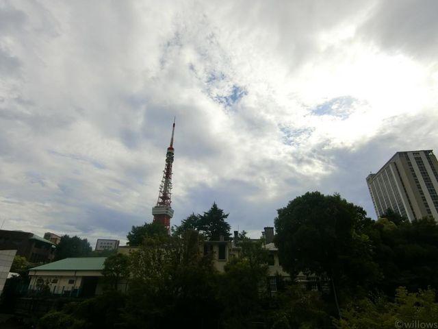 東京タワーを望む素敵な眺めです。