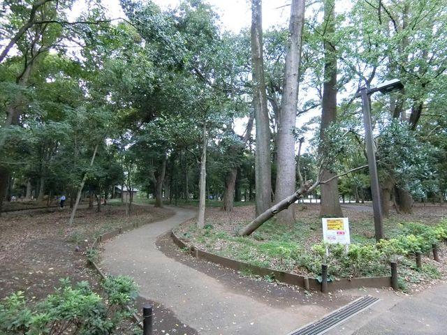 林試の森公園サービスセンター 徒歩7分。 490m