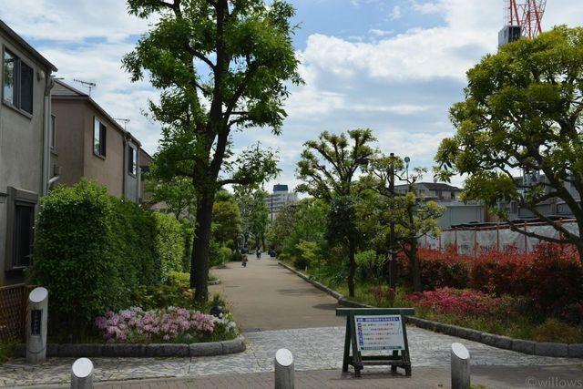 烏山川緑道 50m