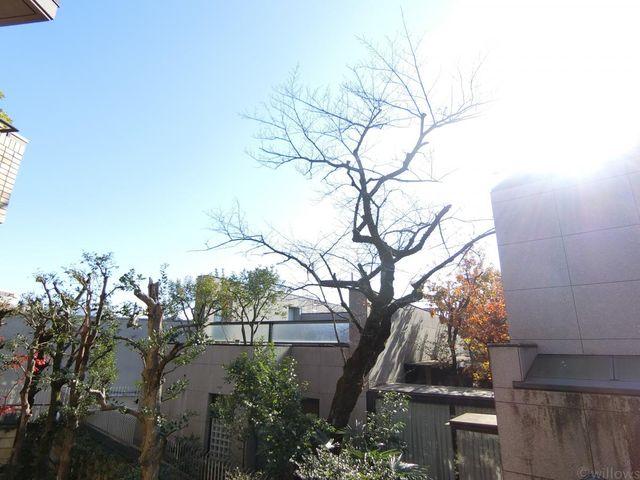 南向きの為、陽当たりが素晴らしいです。周辺は住居地域なので、高い建物が建つ心配もございません。心地よい風と、自然を感じる緑を臨みます。都心にいながら春夏秋冬様々な景色を見せてくれます。