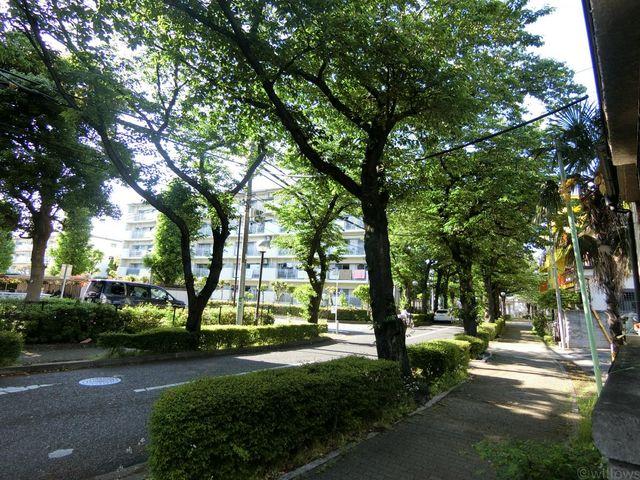 春は桜を、夏は緑を、季節を感じられる立地です。さわやかな自然に囲まれて優しい生活を過ごしてみませんか。