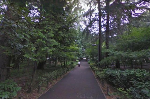 林試の森公園 広大な土地に生い茂る緑。都心でありながら自然を感じることが出来る環境です。 550m