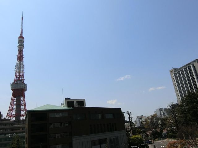 目の前に大きな建物がなく、眺望非常に抜けています。東京タワーが丁度キレイに見える物件です