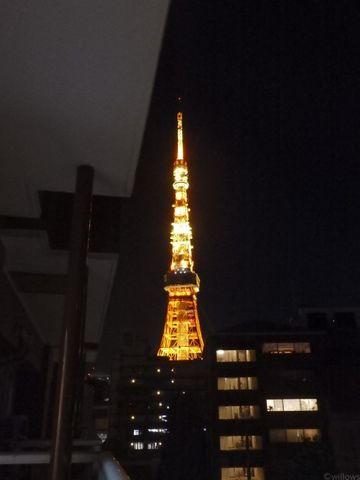 バルコニーからは東京タワーを望めます。近隣に大きな建物がなく眺望抜けています。