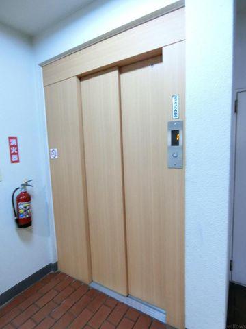 木目調なデザインが優しく迎えてくれます。温かみのあるエレベーターホールです。