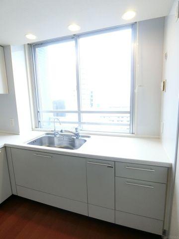 キッチン単体の写真です。白を基調とした清潔感のあるキッチンです。