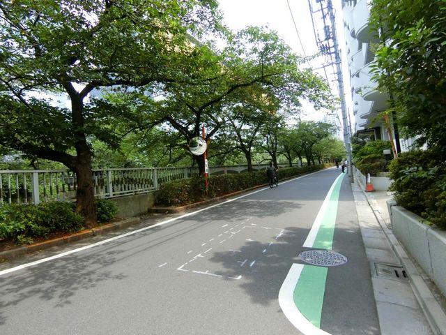 前面道路は目黒川の桜並木です。都心ながら静かで緑豊かな環境は、毎日の生活の中でも飽きを感じさせません。