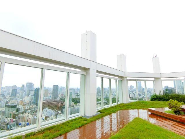 共用部分のテラスです。37階からの眺めも素敵です!芝生があり管理体制の良好さも覗えます。
