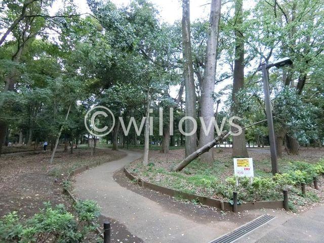 林試の森公園  630m