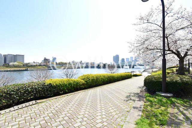 石川島公園 徒歩4分。 300m