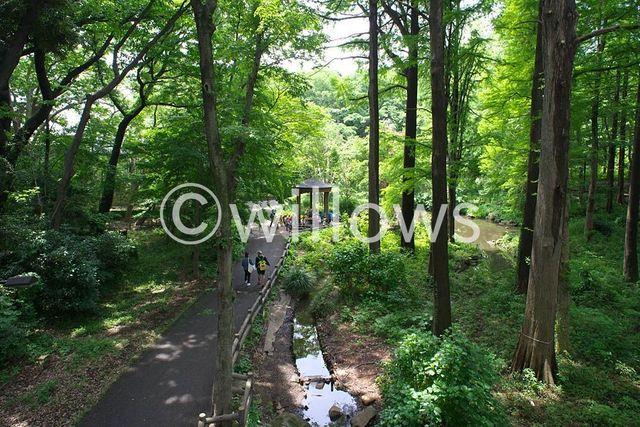 林試の森公園 560m